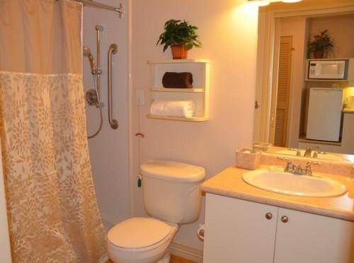 Senior friendly private bathrooms